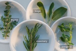 getty_rm_photo_of_herb_assortment